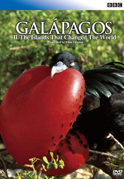 BBC ガラパゴス のサムネイル画像