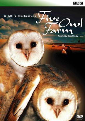 Five Owl Farm 田園のフクロウたち のサムネイル画像