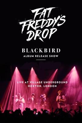 Fat Freddy's Drop - Live at Village Underground のサムネイル画像