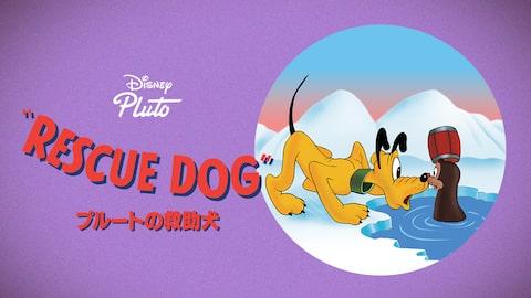 プルートの救助犬 のサムネイル画像